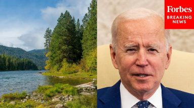 White House Feels Biden Will Have Strong Negotiation Position On Climate Change At COP26